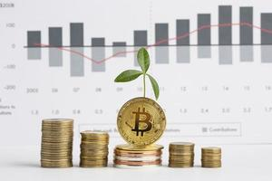 piles coins with plant front graph. photo