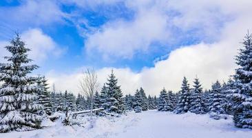 Winter landscape in the Brocken mountain, Harz mountains, Germany photo