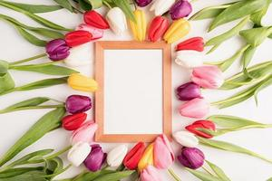 Wooden frame with colorful spring tulips photo