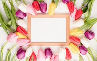 Wooden frame with colorful spring tulips top view photo