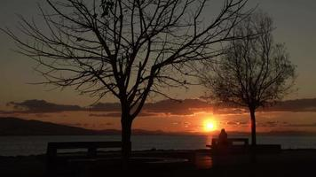 Lonely Woman Sitting on Bank Beach at Red Sunset in Winter And Looking Ocean video