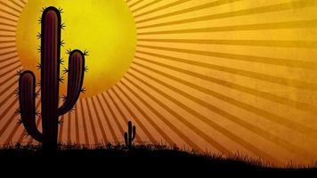 Hot sun in the desert video