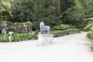 estatua de león en un jardín foto