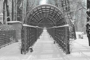 Arco de enrejado en el callejón Summer Garden Park en San Petersburgo, Rusia foto