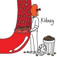 metaphor function of human kidney to filter wastes vector