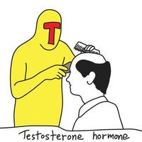 metaphor function of testosterone hormone i vector