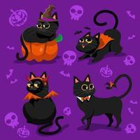 Cute Black Cat for Halloween vector