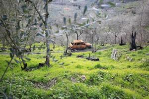 Natural landscape with abandoned car photo