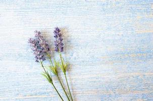 Flores de lavanda sobre fondo de madera azul foto