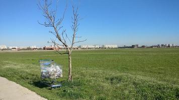 basura recolectada del campo en el carrito de compras foto