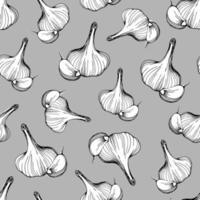 patrón de ajo. ilustración vectorial vector