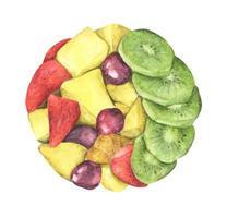 Circle of Healthy fresh fruit salad. Watercolor illustration. vector