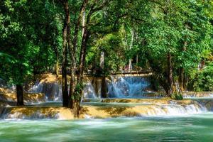 Tad Sae Waterfall in Luang Prabang, Laos photo