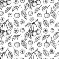 Hand drawn cherry seamless pattern vector