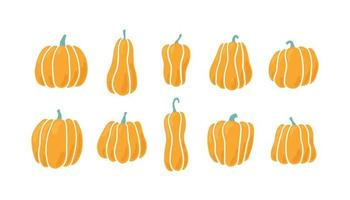 Pumpkins of different shapes. Hand drawn vector illustration
