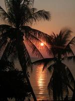 A crazy sunset in India Views of the India photo