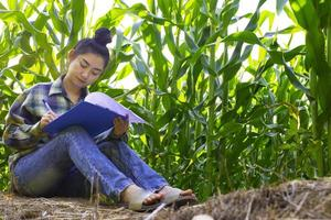 young farmer observing some charts corn in filed photo