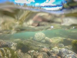At riverside bowl and pitcher state park in spokane washington photo