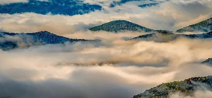 Foto de niebla de otoño temprano en la mañana en Blue Ridge Parkway, Carolina del Norte