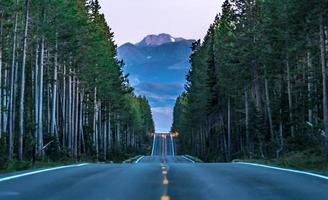 road through forest leading to grand tetons photo