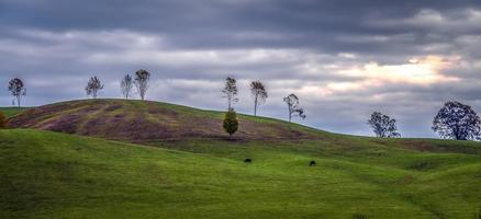 pintoresco paisaje otoñal en virginia occidental foto