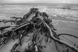 hunting island south carolina beach scenes photo