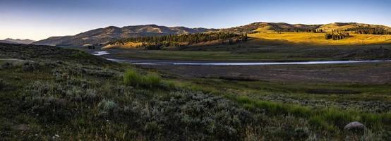 escenas de la naturaleza de la mañana en hayden valley yellostone wyoming foto