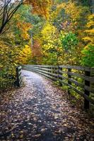 Scenic views along virginia creeper trail photo
