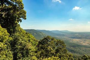 paisaje de bosque tropical con fondo de cielo azul y montaña foto