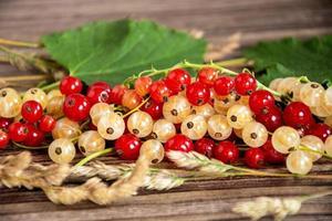 grosellas rojas y blancas con hojas verdes en un primer plano del montón. foto