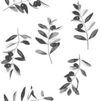 Olives and branches hatching vintage vector set