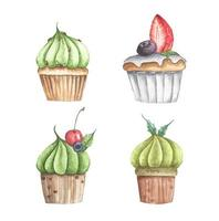 Set of different cupcakes. Watercolor illustration. vector