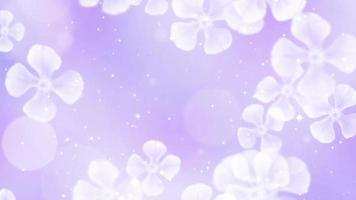 Beautiful Flowers Background video
