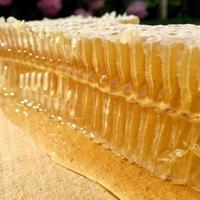 textura de fondo, dejando caer gotas de miel dulce foto