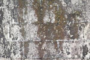 dirty grunge brick wall background with dead moss photo