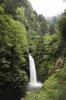 Rize Camlihemsin Palovit Falls, Turkey, Waterfall View photo
