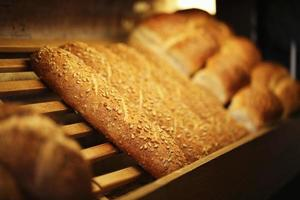 Grain Corn Bread, Bakery Products, Pastry and Bakery photo