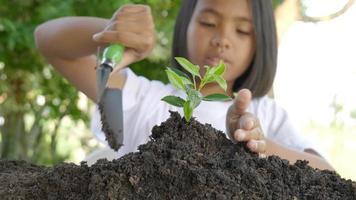 petite fille utilise une pelle pour planter un jeune arbre dans un sol fertile video