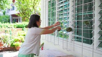 mulher asiática sênior pendurando uma pequena planta na parede para decorar a casa video
