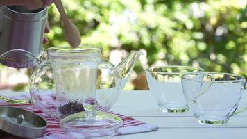 câmera lenta de uma mulher enchendo as folhas de chá no bule video