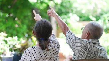 senior asian couple looking and pointing up in garden together video