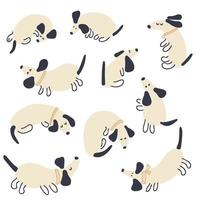 Pastel colored vector collection of playing dachshunds