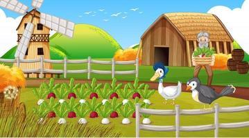 Farm scene with old farmer man and farm animals vector