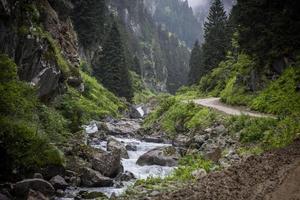 karadeniz rize cat village stream, turquía, vista de la meseta foto