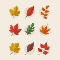 conjunto de iconos de hojas de otoño vector