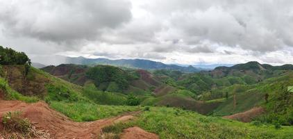 Panorama of rainforest destroyed for rice field photo