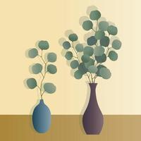 eucalyptus plants in vases vector illustrations