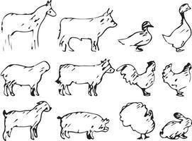 set of farm animal vector illustration