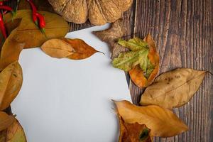 blank paper and leaves concept hello september photo