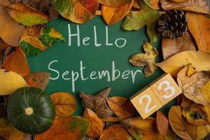blackboard write a message hello september with leaves placed on top photo